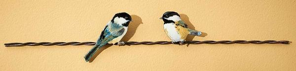 Chickadee Pair on Wire