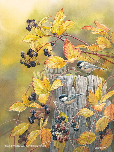 Blackberry Haven—Chickadees.