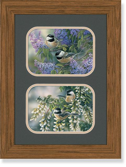 Chickadees Gna Mini Double Framed Print