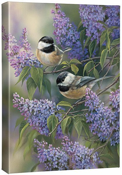 <I>Chickadees & Lilacs</i> Gallery Wrapped Canvas