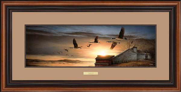 Clear View-Canada Geese Art Collection
