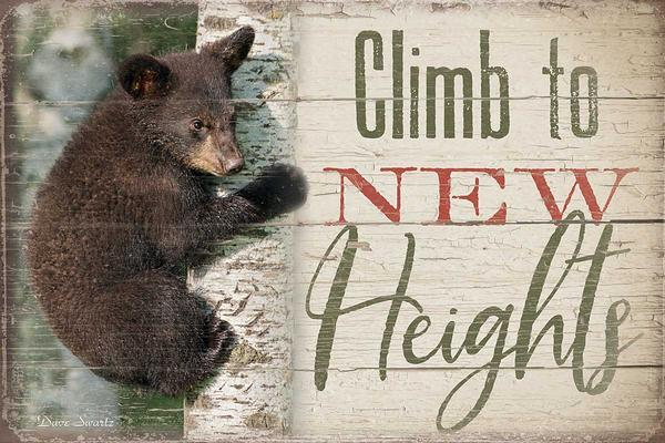 <I>Climb To New Heights</i> 8 X 12 Wood Sign