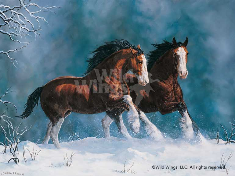 Snow Kings—Clydesdales.