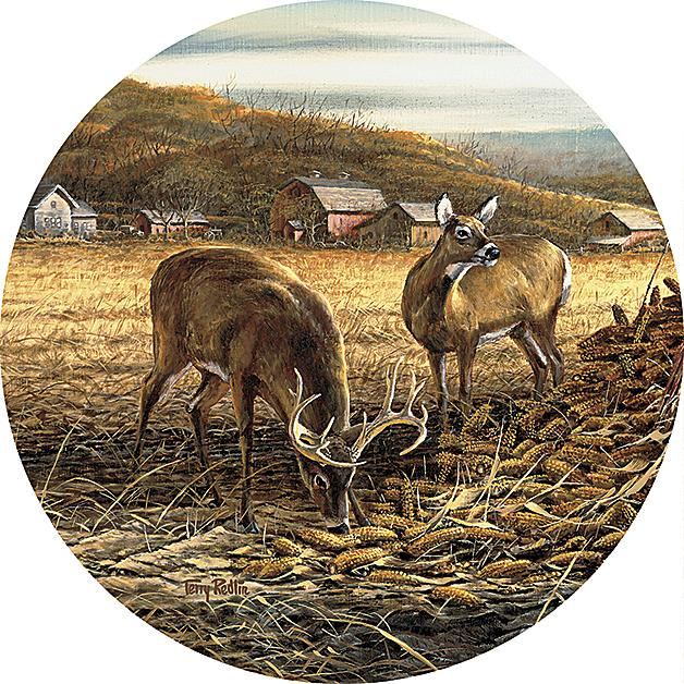 Sharing The Bounty—deer Coasters