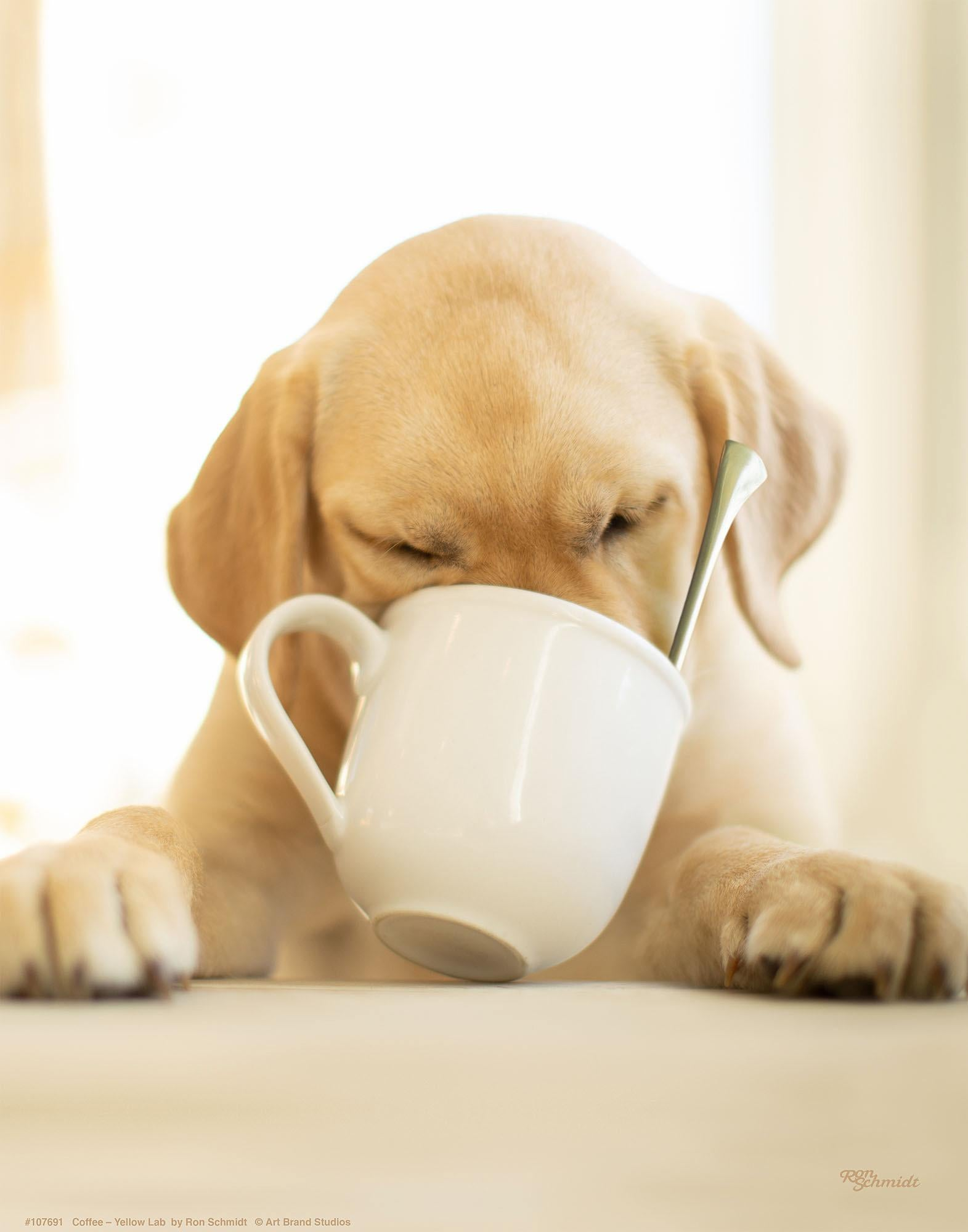 Coffee-Yellow Lab Art Collection