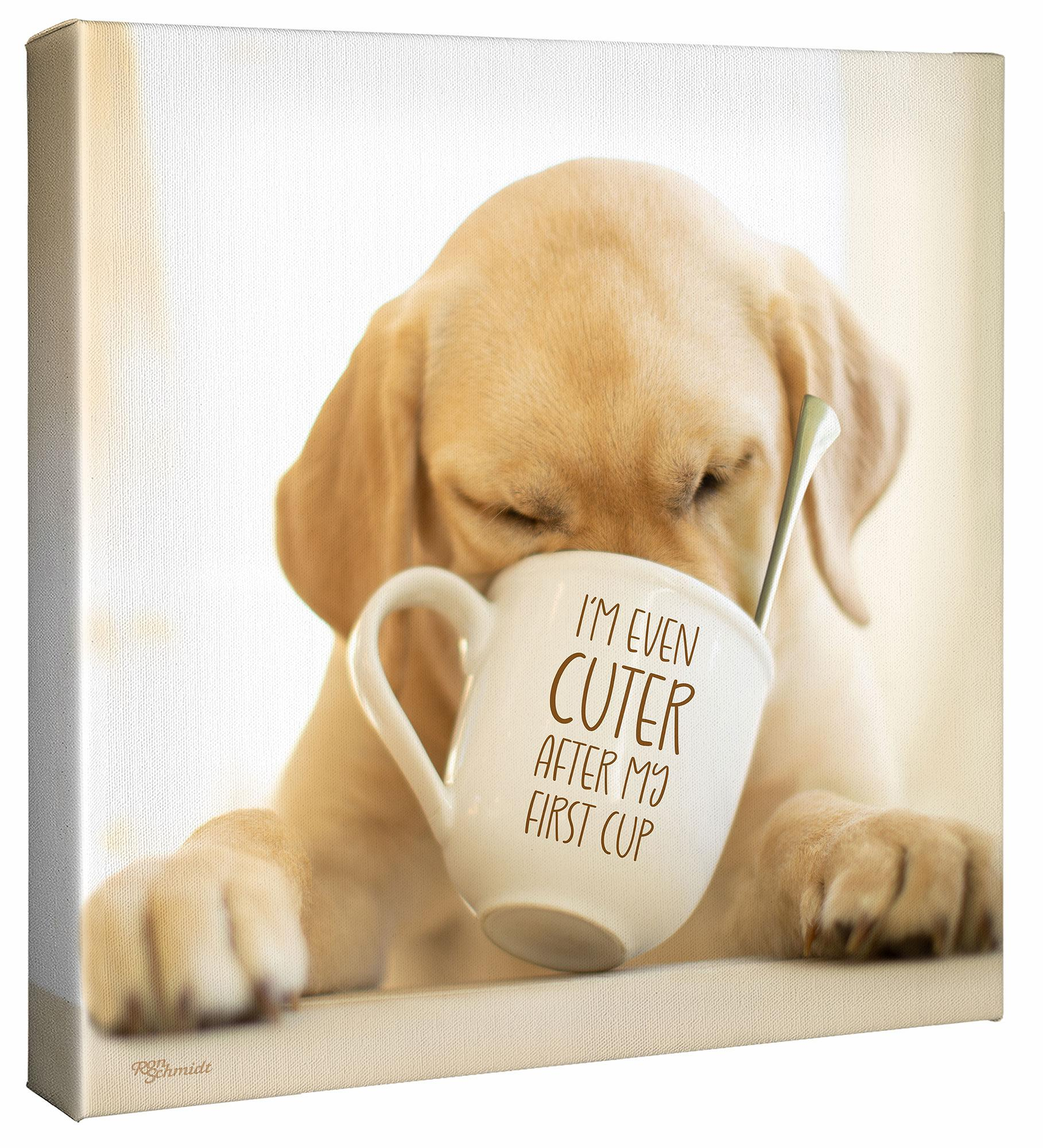 Coffee—Yellow Lab.