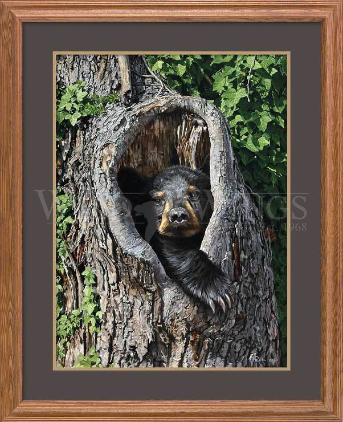 <I>Cubby Hole&mdash;black Bear</i> Gna Premium Framed Print<Br/>31H X 25W Art Collection
