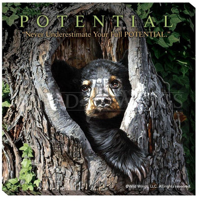 <I>Cubby Hole&mdash;black Bear</i> Motivational Wrapped Canvas<Br/>16H X 16W Art Collection