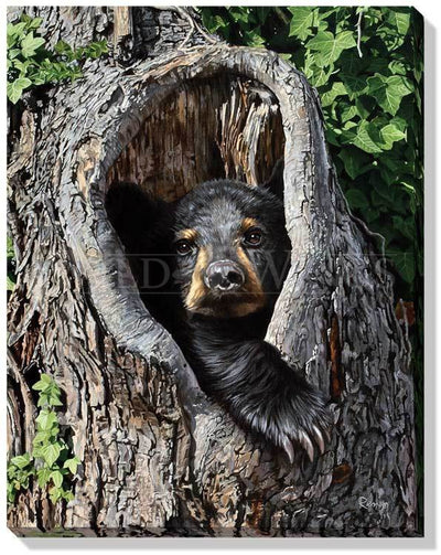 <I>Cubby Hole&mdash;black Bear</i> Wrapped Canvas<Br/>20.5H X 16W Art Collection