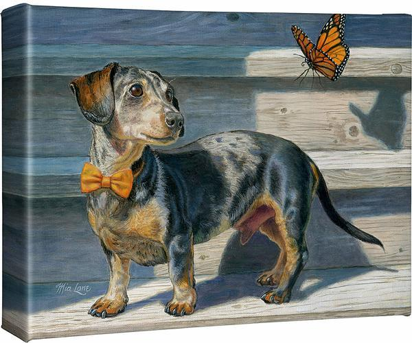 <I>Dachshund</i> Gallery Wrapped Canvas