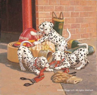 Where's the Fire?—Dalmatian Puppies.