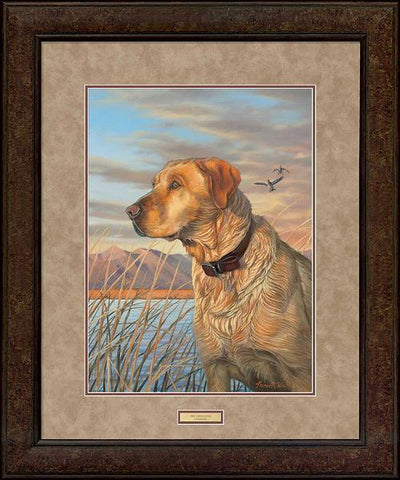 <I>Day Dreaming&mdash;yellow Lab</i> Gna Premium+ Framed Print<Br/>35H X 29W Art Collection