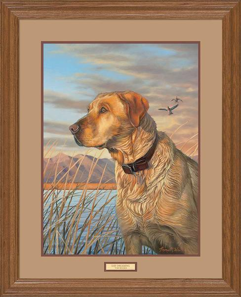 <I>Day Dreaming&mdash;yellow Lab</i> Gna Premium Framed Print<Br/>31H X 25W Art Collection