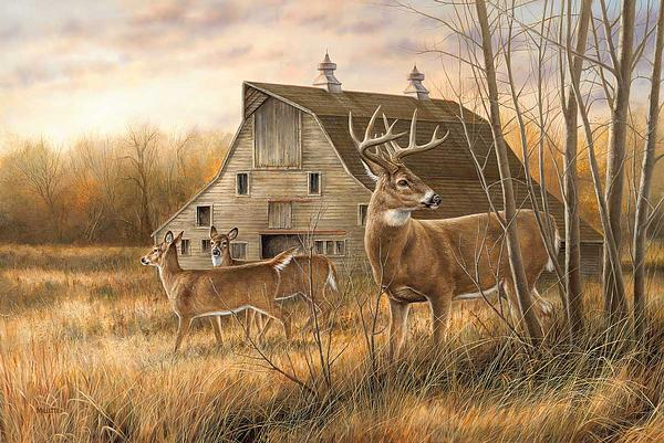 Deserted Farmstead-Whitetail Deer Art Collection