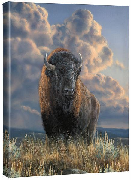 <I>Distant Thunder&mdash;bison</i> Gallery Wrapped Canvas