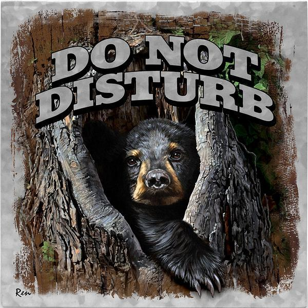 Do Not Disturb—Bear.