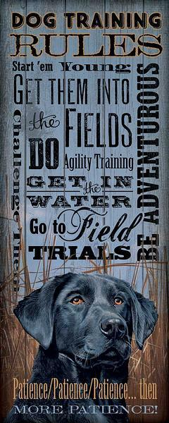 Dog Training Rules—Lab.