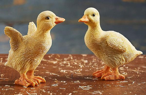 <i>Ducklings</i>