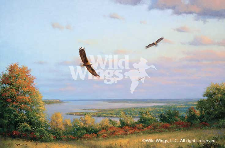 Eagles Over Lake Pepin Art Collection