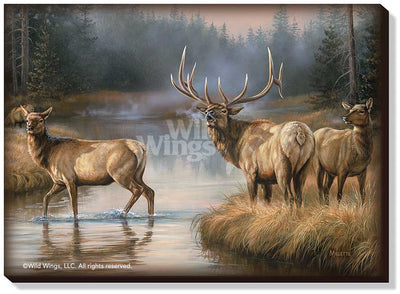 Autumn Mist-Elk Art Collection