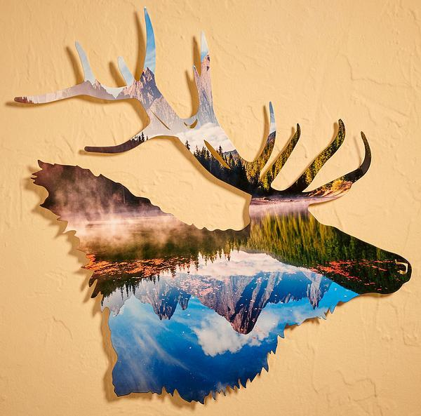 Elk Head Reflection.