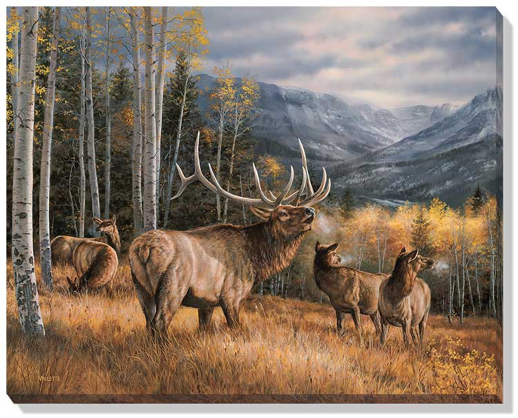 <i>Meadow Music&mdash;Elk</i>