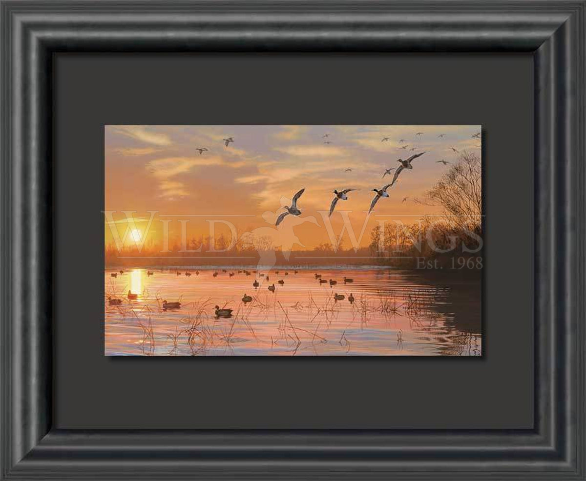 <I>End Of A Great Day&mdash;lake</i> Float Mount Print<Br/>23H X 28W Art Collection