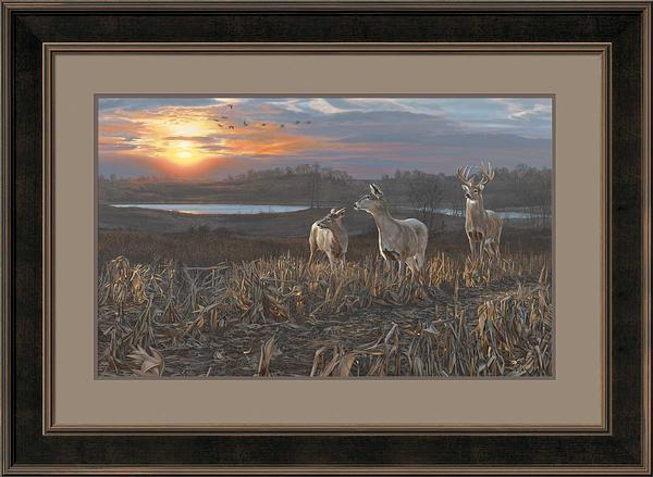 Evening Glow-Deer Art Collection