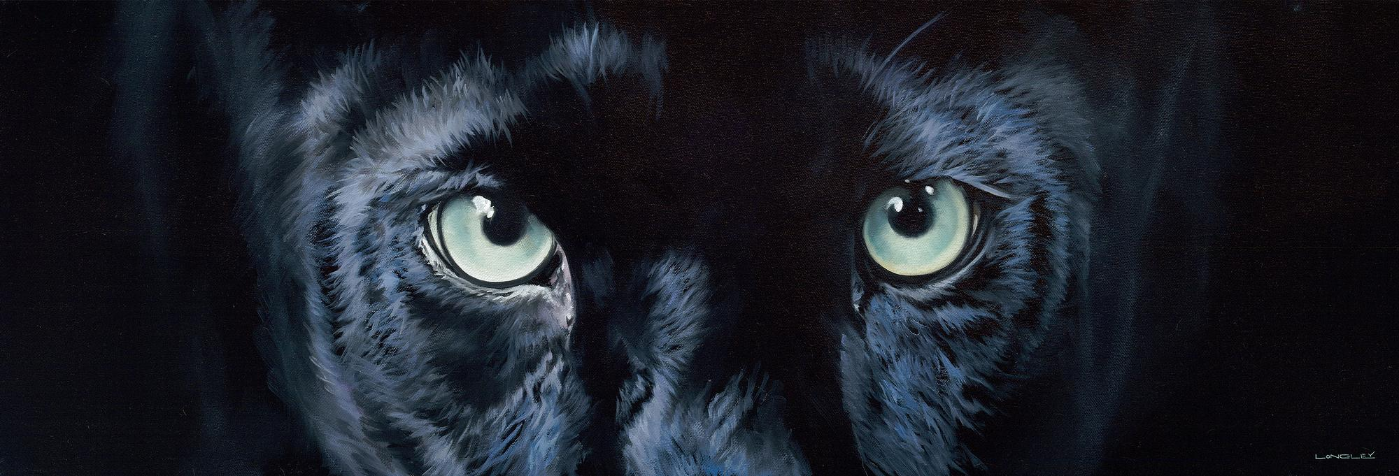 Eyes-Puma Art Collection