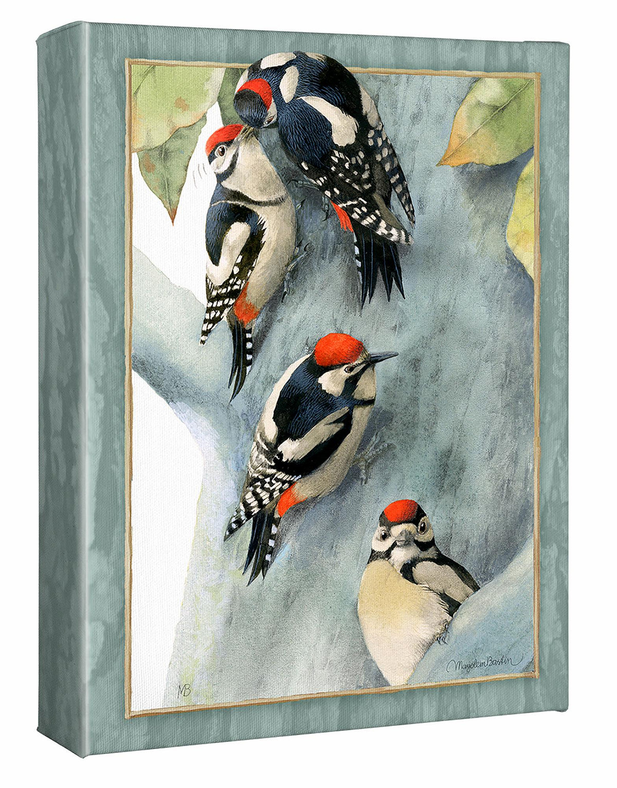 Family of Spotted Woodpeckers.