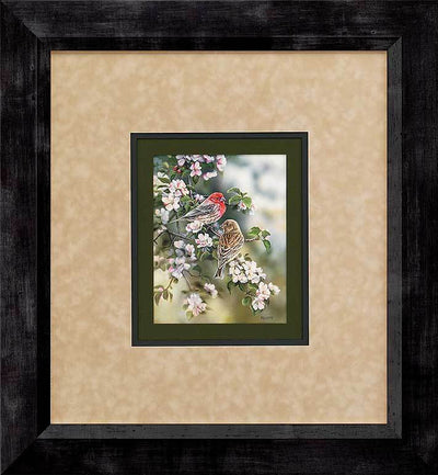 <I>House Finches</i> Gna Deluxe Framed Print<Br/>29.25H X 27.75W Art Collection