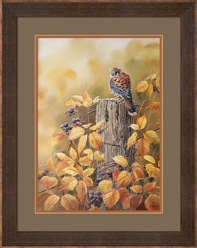 <I>Autumn Mist&mdash;kestrel</i> Framed Limited Edition Print<Br/>34.5H X 27.5W Art Collection
