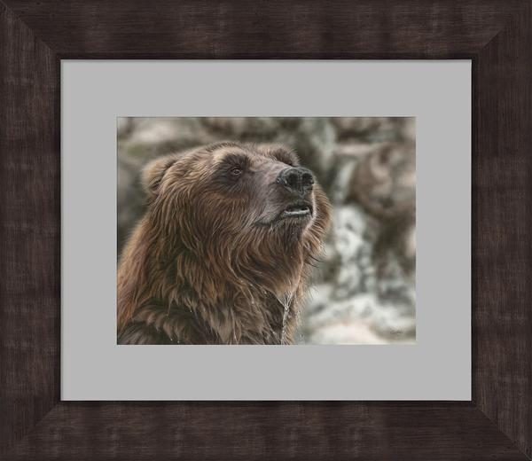 Bath Interrupted&mdash;grizzly Bear Framed Limited Edition Print<Br/>21H X 24.5W Art
