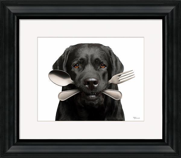 Bone Appetit Framed Art Print