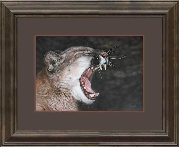 Cat Nap&mdash;mountain Lion Framed Limited Edition Print<Br/>21.25H X 26W Art Collection