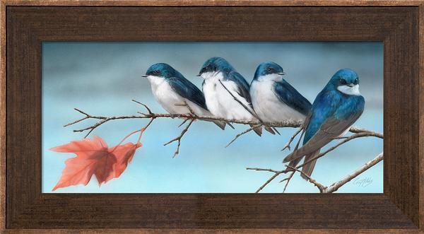 Fall&mdash;tree Swallows Framed Limited Edition Canvas<Br/>15H X 26W Art Collection