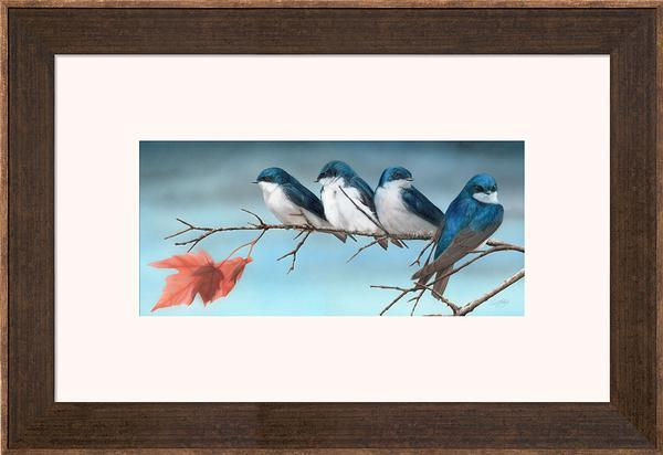 Fall&mdash;tree Swallows Framed Limited Edition Print<Br/>20H X 29.25W Art Collection