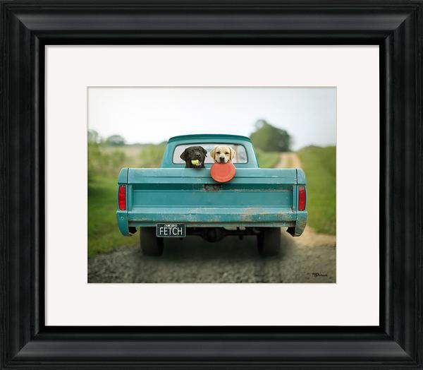 Fetch Framed Art Print