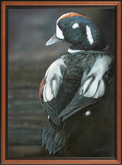 Harlequin Framed Limited Edition Canvas<Br/>21.25H X 15.75W Art Collection