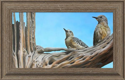 High Noon—Gila Woodpeckers.