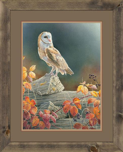<I>Out Of The Shadows&mdash;barn Owl</i> Framed Limited Edition Print<Br/>34H X 27.5W Art Collection