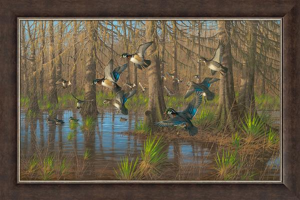 Party Time—Wood Ducks