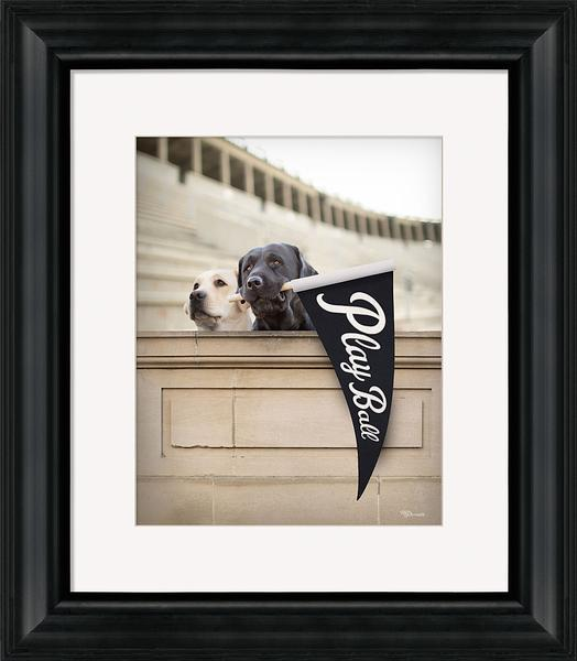Play Ball Framed Art Print
