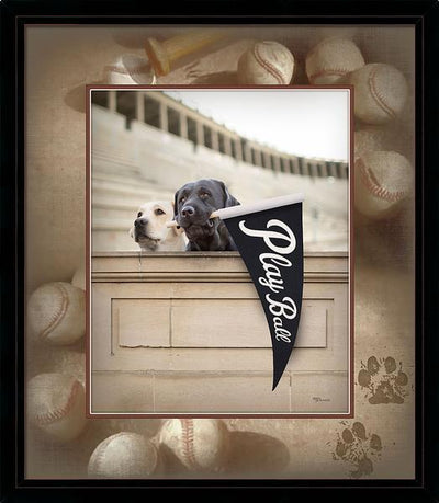 Play Ball Framed Print<Br/>31H X 27W Art Collection