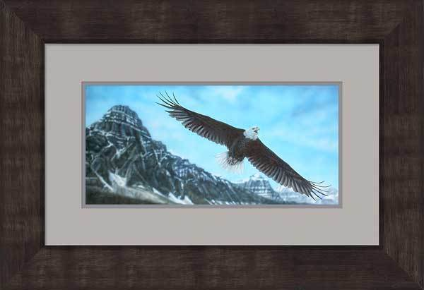 Rocky Mountain High&mdash;bald Eagle Framed Limited Edition Print<Br/>19H X 28W Art
