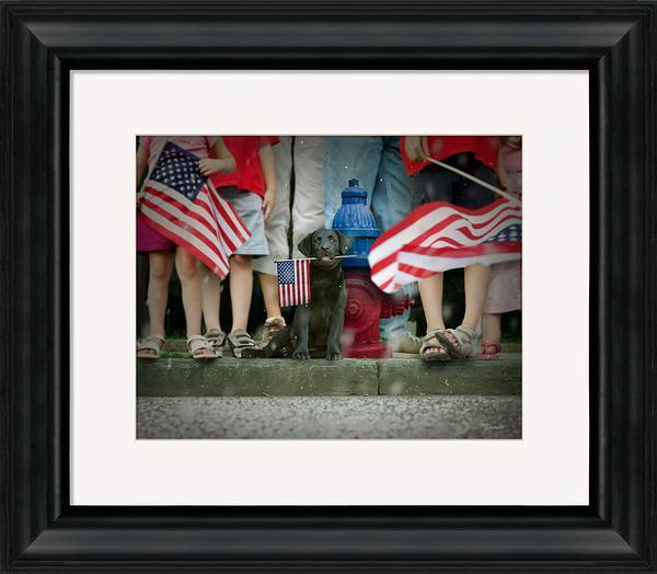 <I>Sam</i> Framed Art Print