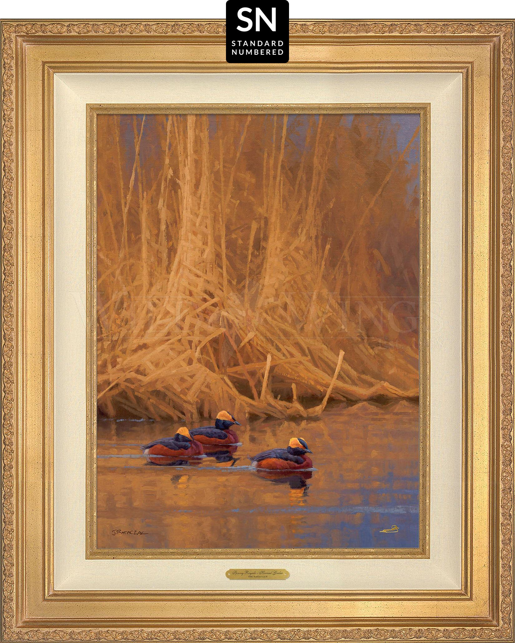 Spring Royals—Horned Grebes - Master Artisan Collection — Standard Numbered Edition (SN).