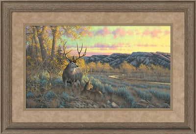 Stand with Me-Mule Deer Art Collection