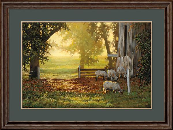 Summer Gold-Sheep Art Collection