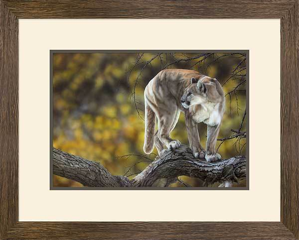 &then She Was Gone&mdash;mountain Lion Framed Limited Edition Print<Br/>18.75H X 23.5W Art